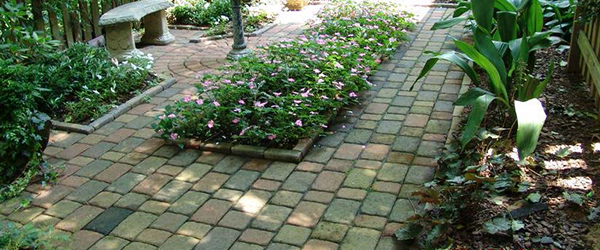 Landscaping Plants and Gardens