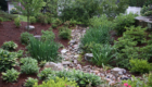 Drainage Dry Creekbed