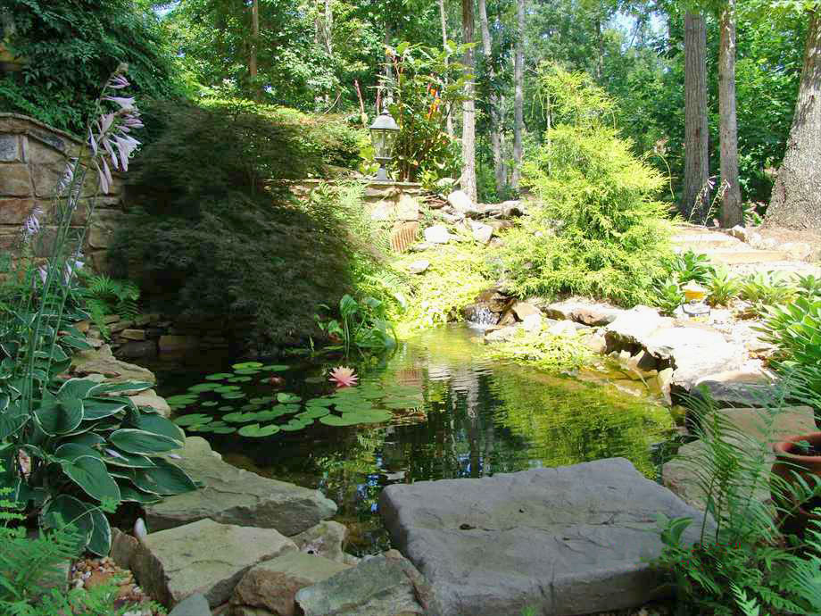 Water Feature Pond Stone Lillies Landscaping Atlanta